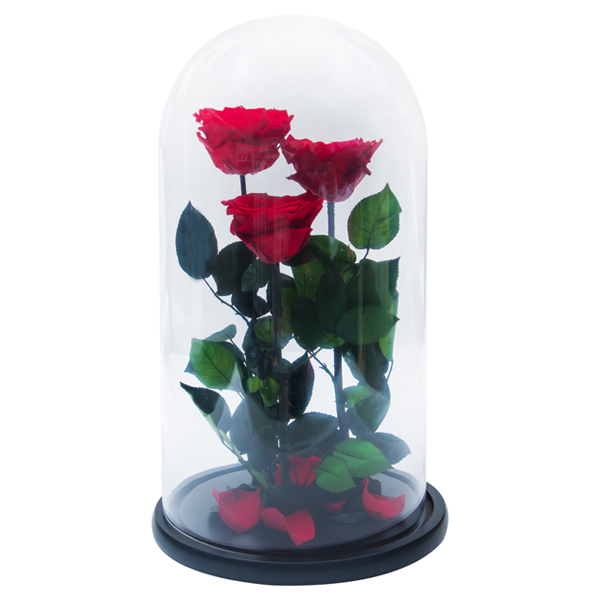 Enchanted Roses In Flask №2