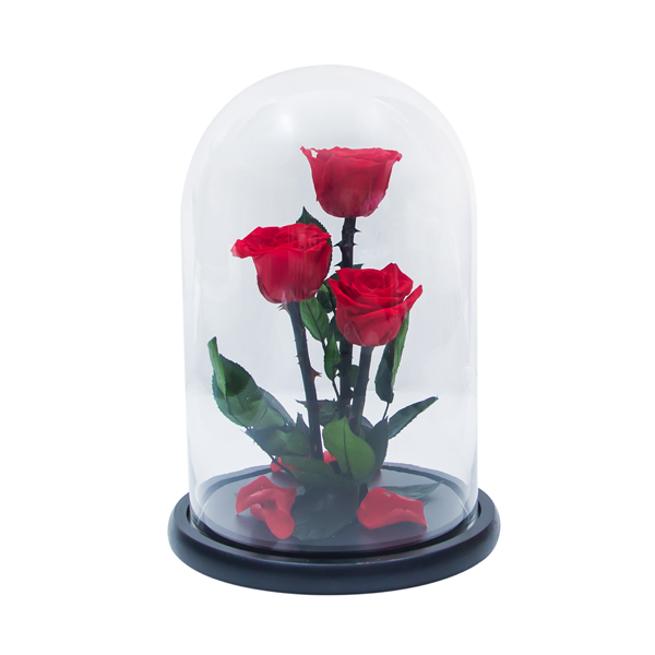 Enchanted Roses In Flask №3