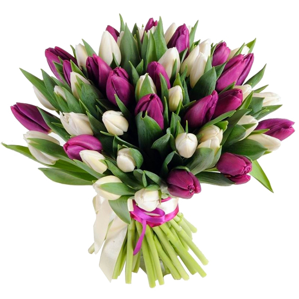 Bouquet Of Tulips Lilac