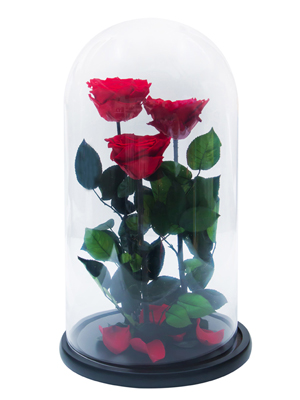 Enchanted Roses In Flask №2 1