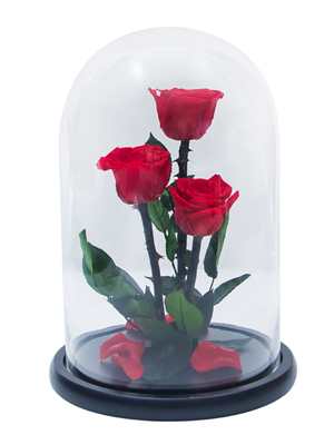 Enchanted Roses In Flask №3 1