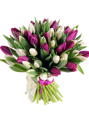 Bouquet Of Tulips Lilac 1